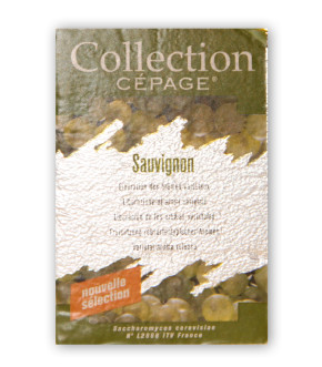 Ledinegg Kögl Collection Cepage Sauvignon